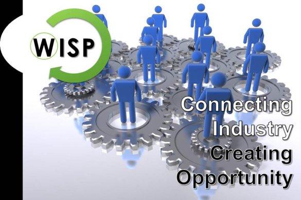 WISP Synergy Workshop Summary Report