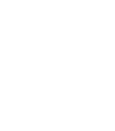 110-logo-flagships.png