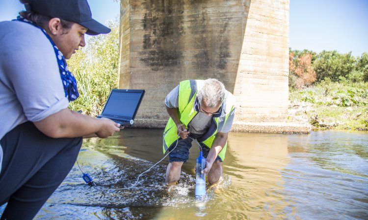 Environmental Officers checking water quality