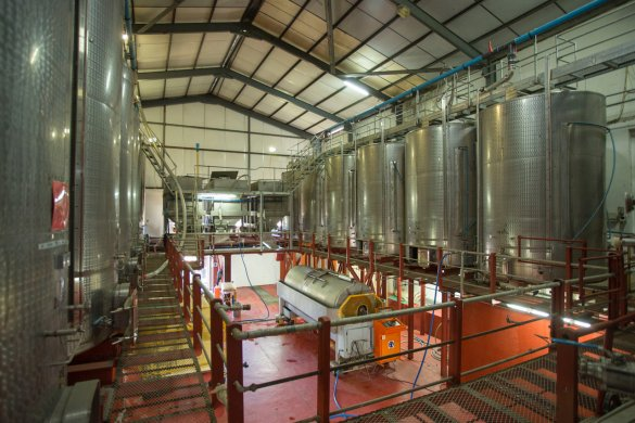 Raising the fermentation vessels in the cellar at Backsberg Wine Estate, allows wine to be moved largely by gravity, which translates into a reduction in electricity, and less pumping translates into gentler treatment of the wine.