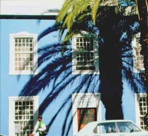 Palm Tree Mosque