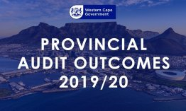 Audit outcomes