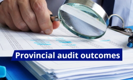audit-outomes-2019-1-FB.PNG