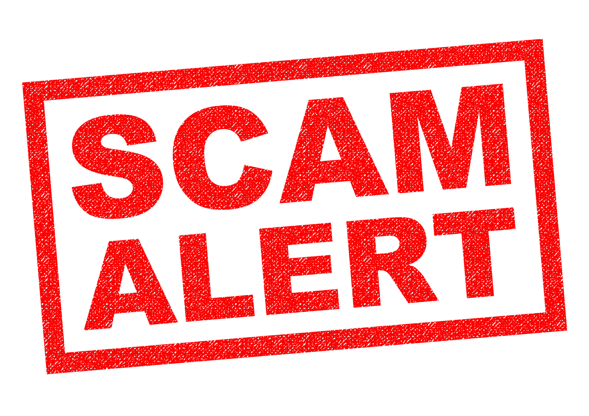 avoid tender scams