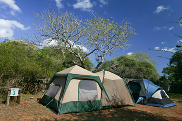 camping with tents