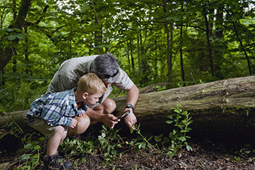 dad-and-son-in-nature.jpg