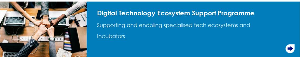 Digital Technology Ecosystem Support programme