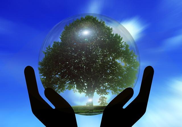World Meteorological Day 2015