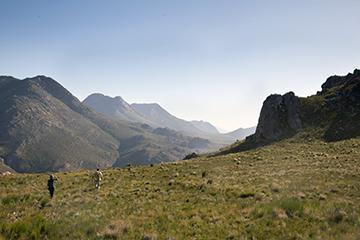 Swartberg Nature Reserve