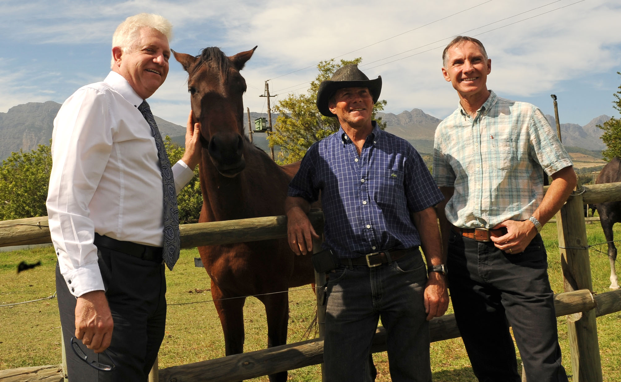 Minister Alan Winde visited a Paarl farm where a horse died after an AHS infection. Minister met with the farm owner.