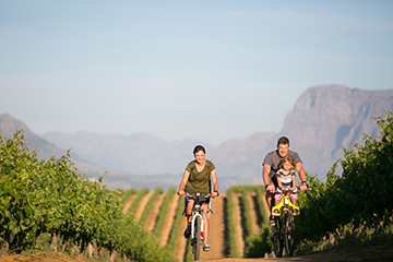 Family enjoying a mountain bike ride in the Cape Winelands region.