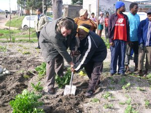 Community Gardens Provide Food Security to the Overberg Community
