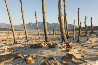 Drought relief for Western Cape farmers