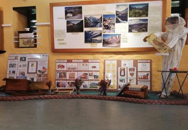 A new honeybee farming exhibit has opened at the Bartolomeu Dias Museum