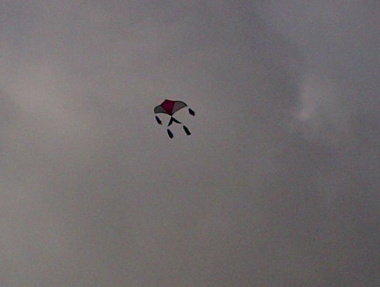 An airborn kite at Elsies River