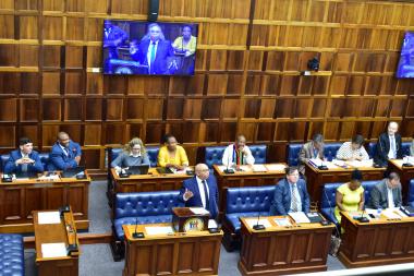 Budget Vote_Speech Minister Albert Fritz