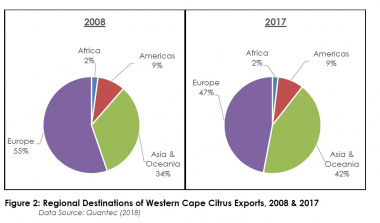 Graphic of Western Cape citrus exports