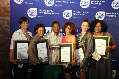 The winners of the Female Entrepreneurs Awards were announced at a ceremony in Paarl.