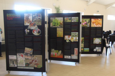 Information on traditional medicinal plants was on display