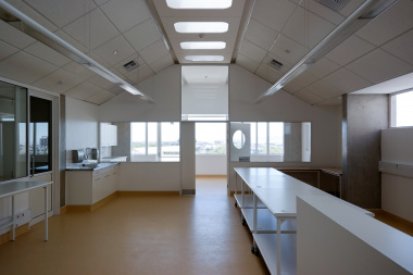 Natural light is a design feature