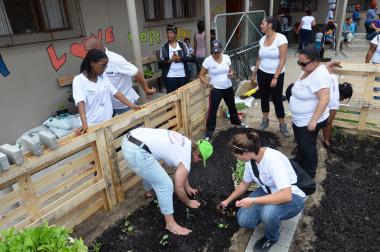 The Personal Assistants built a vegetable garden.