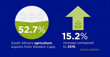 Exports from Western Cape increase compared to 2016