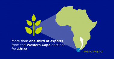 More than one-third of exports from the western cape destined for Africa