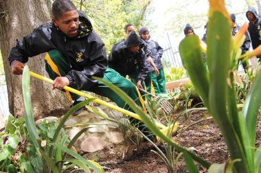 Rhowellen Isaacs works in the Huis Dias garden.