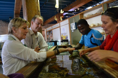 Staff show Minister Marais the touch tank at the Aquariam which is part of the Diaz museum complex