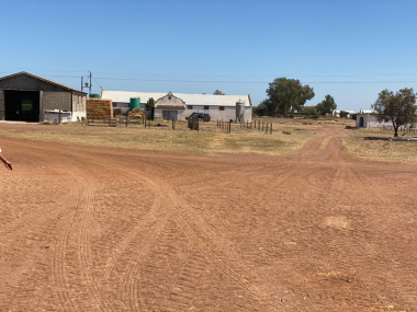 The farm Colenso