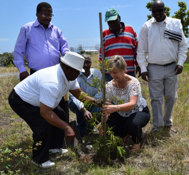 Ward Councillor Coetzee Ntothoviyane assisting Minister Marais with securing the tree.