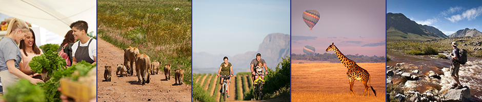 Places to visit in Cape Winelands