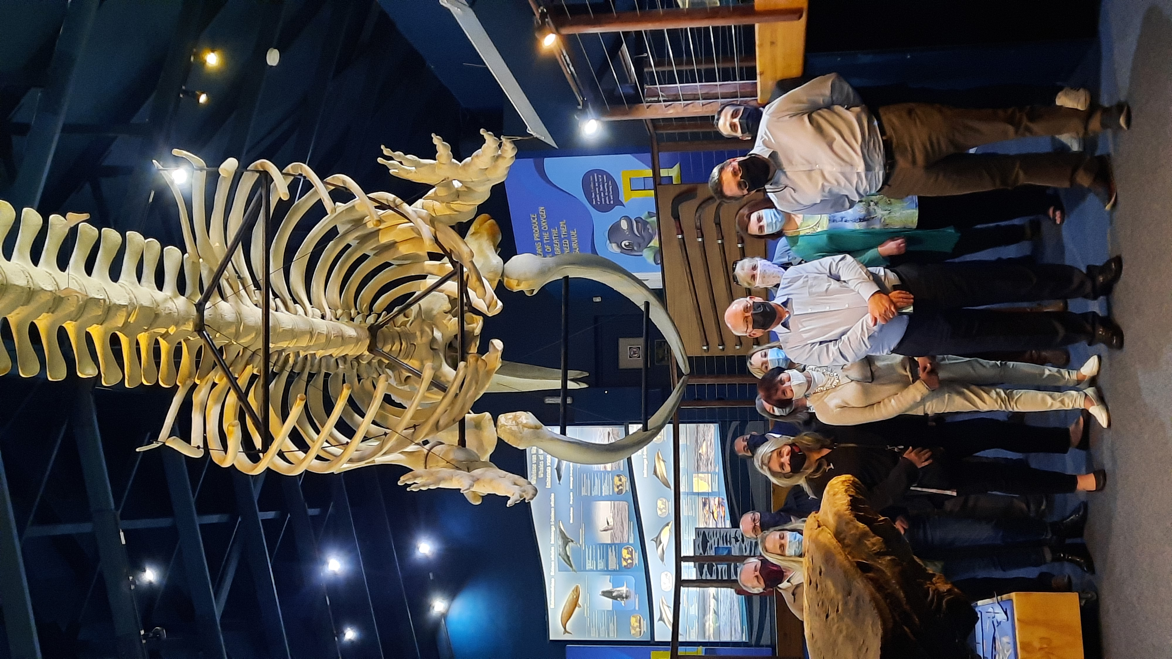Opening Whale House Museum exhibition