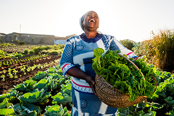 South African woman in vegetable garden