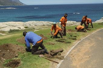workers-road.jpg
